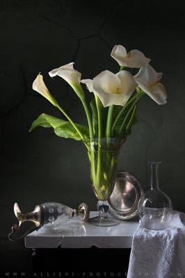 A still life photograph of Calla lilies in a glass vase.